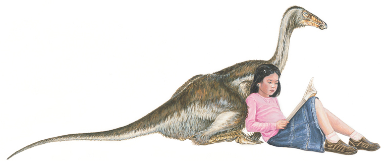 """A girl and her ornithomimid. Greg Paul said of theropods in   Predatory Dinosaurs of the World   that """"Their stiff, perhaps feathery bodies were not what one would care to have sleep at the foot of the bed"""" ( Paul 1988 , p. 19), but maybe he was wrong. This is another of Mike Skrepnick's illustrations from his 'Would Dinosaurs Make Good Pets' project. Image:Mike Skrepnick."""