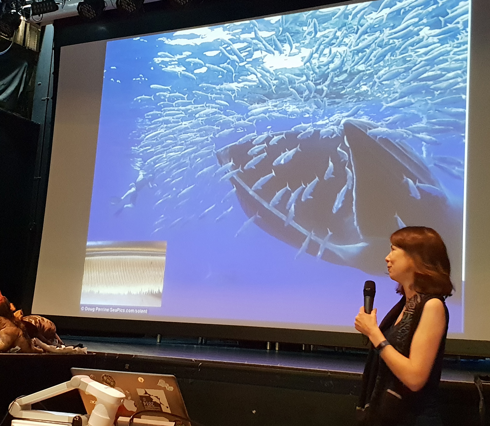 Jenn Jackson gave the most enthralling presentation on baleen whales. Image: Darren Naish.