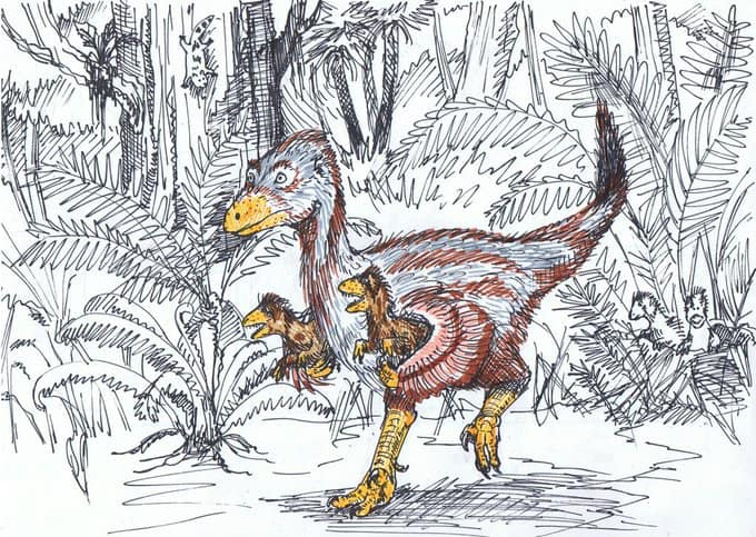 There are no pouches here, but at least we have a speculative scene where an adult maniraptoran (presumably a dromaeosaur) is carrying its young. Image: Alex Sone ( original here ).