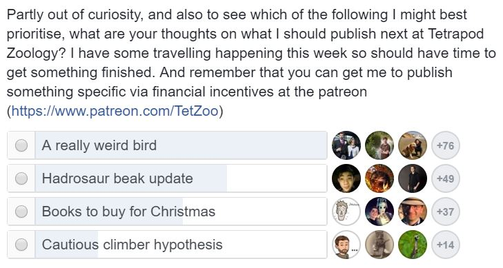 Put 'A really weird bird' into a poll … and, wow, people really like really weird birds. This is a screengrab from a facebook poll.