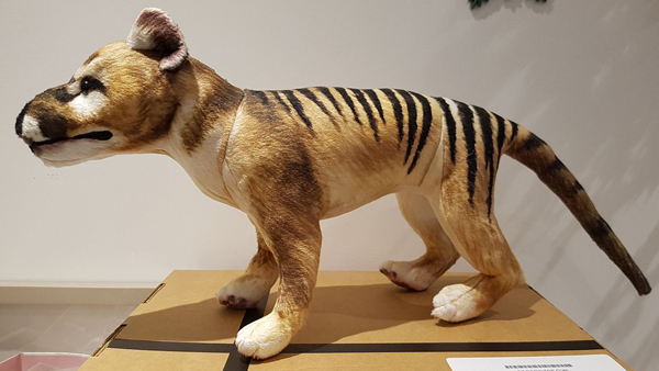 Today, I'm the proud owner of a   PalaeoPlushies   thylacine - a Christmas 2017 gift from my mother-in-law, Sheila. He's called Kid Cynoceph and I love him.   Buy your own here! [UPDATE: currently sold out!]   Image: Darren Naish.