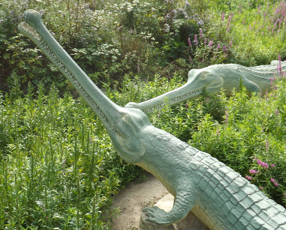 The two  Teleosaurus  of Crystal Palace. While compared by Owen with gharials, it's interesting that the dorsal scute pattern they were given is very clearly based on living crocodiles. As per usual, look at the remarkable amount of well-rendered detail. Image: Darren Naish.