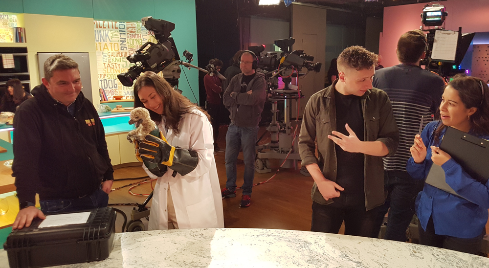 A view from the set of  Sunday Brunch , April 2018. Ash, Chrissie and a hatchling  Dakotaraptor  at left. Image: Darren Naish.
