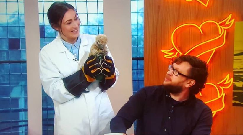 Chrissie, Darren and the  Dakotaraptor  hatchling, live on Sunday Brunch on April 8th 2018. Image: (c)  Sunday Brunch /Channel 4.