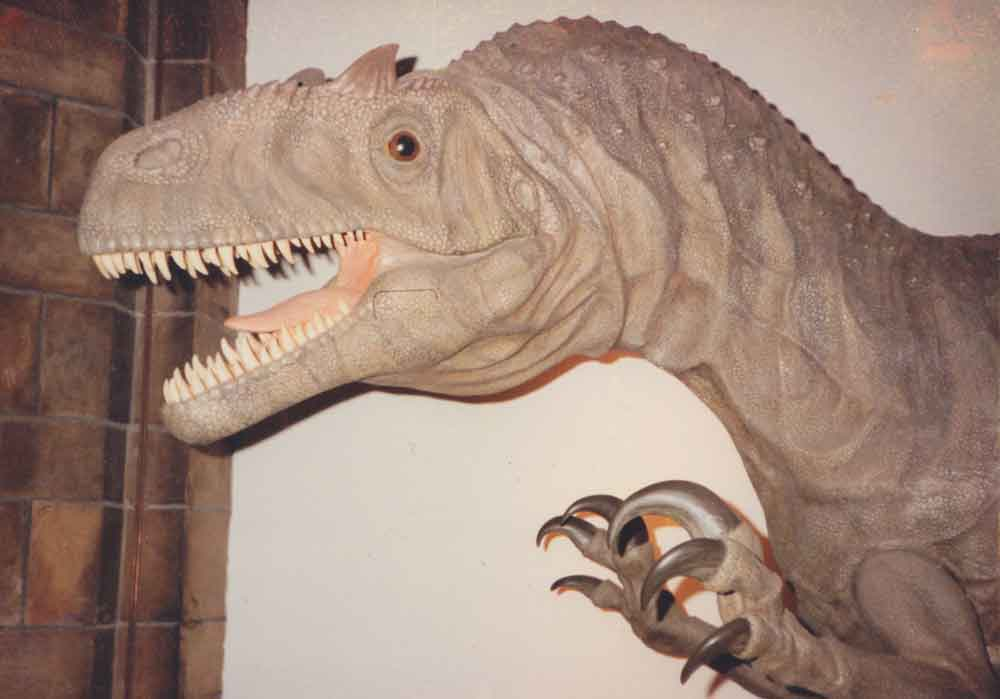 Stephen Czerkas's brilliant  Allosaurus  model at the Natural History Museum, London (as demonstrated by the accompanying stonework) in 1990. Note that the model is in a different position relative to where it is in Spike's photos shown above. Image: Darren Naish.