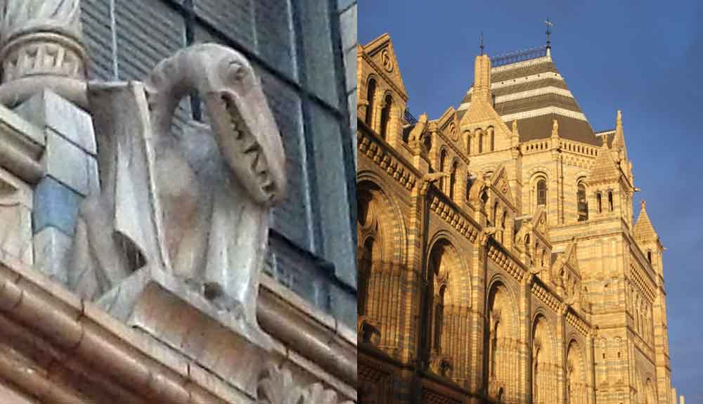 London's Natural History Museum is an amazing building, decorated inside and out with images of plants and animals. The pterosaur at left is one of several visible on the outside of the museum. Images: Darren Naish.