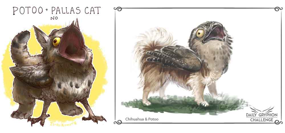 "Potoo x Pallas cat by iguanamouth (from their ""kept getting requests for gryphons so heres a bunch of them At Once "" project), Potoo x Chihuahua by Pechschwinge, from their Daily Gryphon Challenge. Images: (c)  iguanamouth ,  Pechschwinge ."