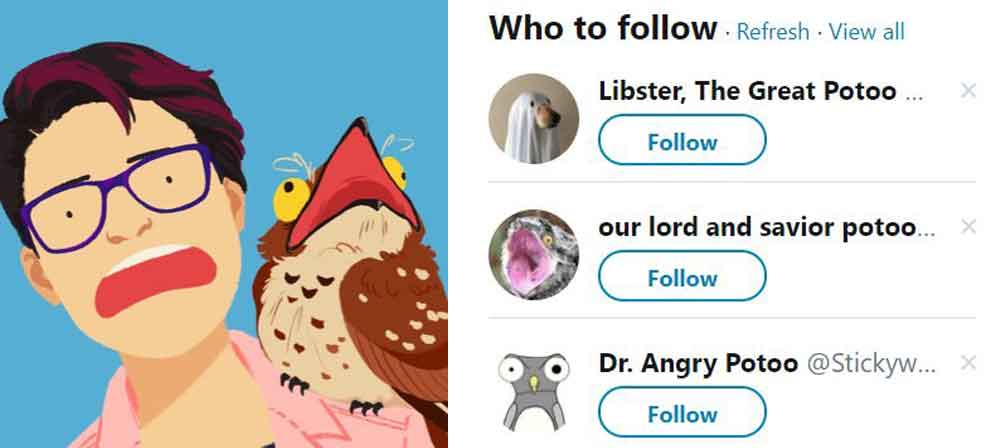 Potoo-themed accounts of Twitter. The avatar at left is that of illustrator   Angela Hsieh, aka @hisiheyah  . A selection of others are at right:   our lord and saviour potoo or @PotooPotoo   is the most relevant for the purposes of the article here. Images: Angela Hsieh, Twitter.