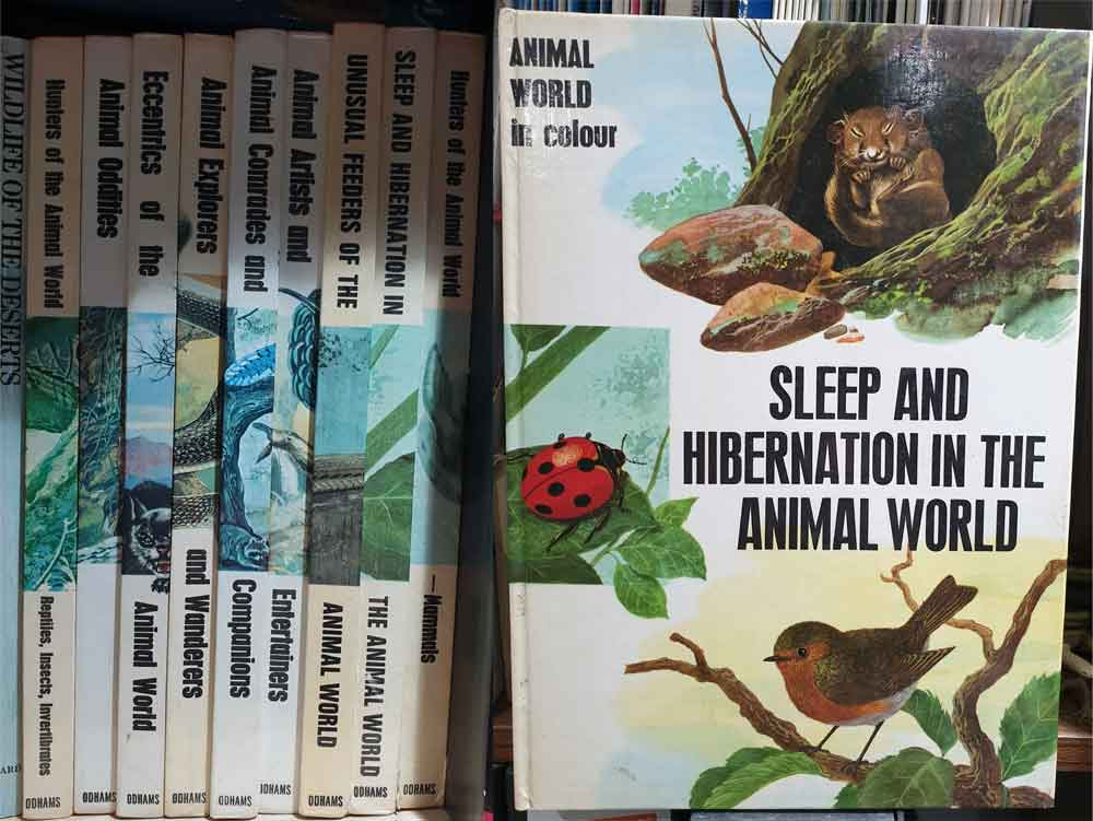 Maurice Burton's  Sleep and Hibernation in the Animal World , part of the Animal World in Colour series, shown at left at their home in the TetZoo library (there are 12 titles in total, so I'm still missing three). Images: Darren Naish.