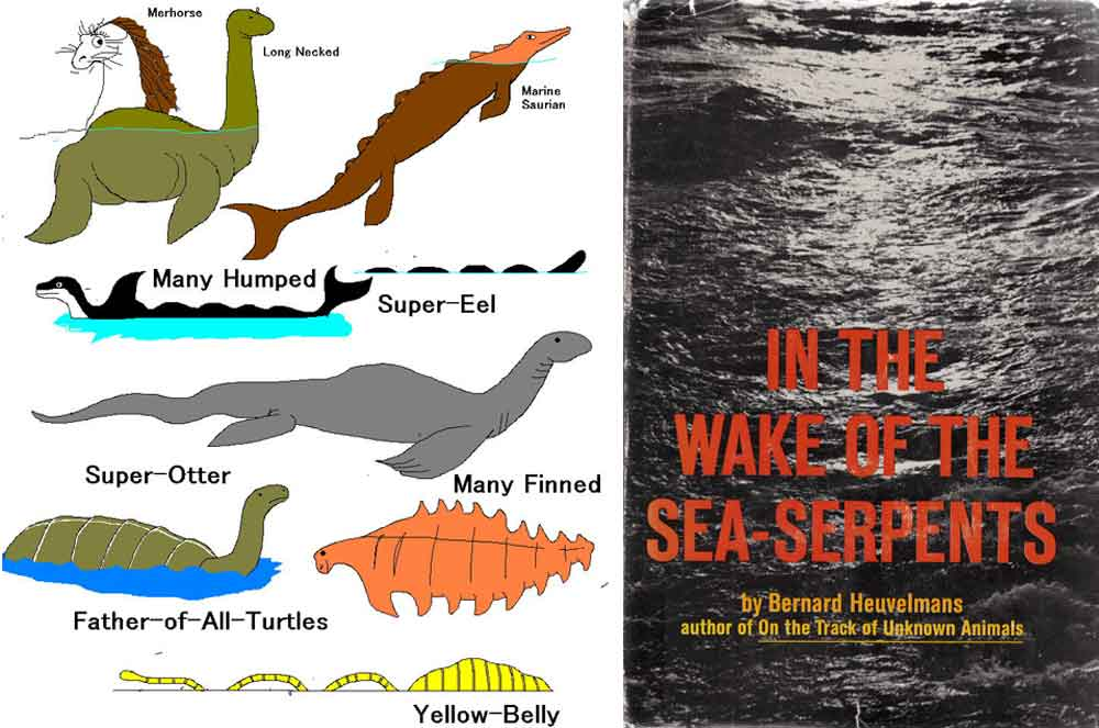 In the most influential book ever written on sea monsters, Bernard Heuvelmans argued for the existence of nine distinct sea monster types, illustrated at left by Cameron McCormick. It was thought for a while that   Heuvelmans (1968)   had done a good job in discovering a valid biological signal in sea monster reports. But… no. Images: Cameron McCormick,   Heuvelmans (1968)  .