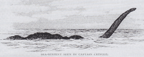 Quite a few sea monsters were likened by their observers to plesiosaurs and other ancient marine reptiles. This rendition shows the monster seen from the  Umfuli  in December 1893, close to the Cape of Good Hope. Image: in public domain.