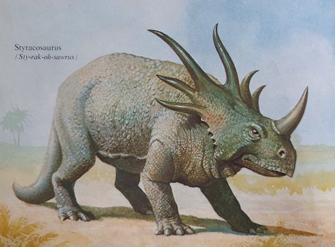 Styracosaurus  from the 1978  Dinosaurs and Prehistoric Animals . Image: Ladybird/Bernard Robinson.