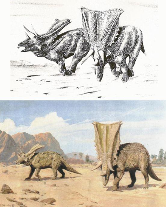 Styracosaurus-Chasmosaurus-Bakker-original-Burian-552px-69kb-May-2019-Tetrapod-Zoology.JPG