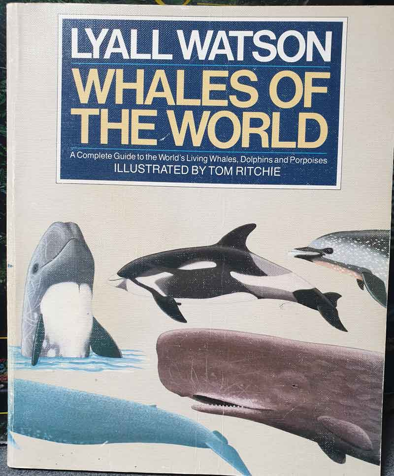 The somewhat worn cover of my copy of   Watson's  Whales of the World    (the 1988 softback edition). Image: Darren Naish.