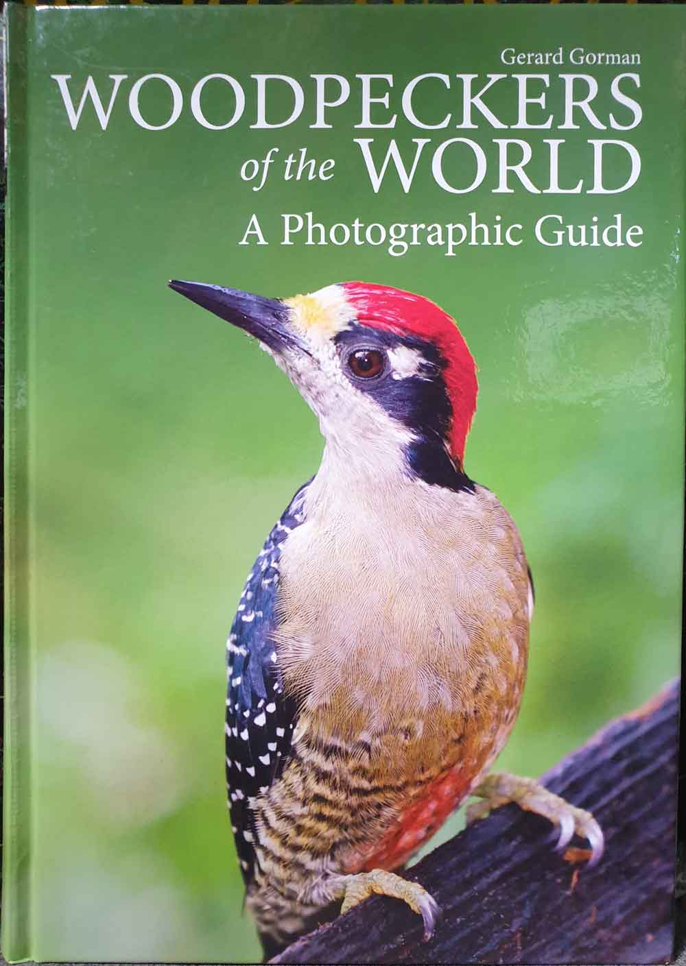 woodpecker-books-June-2019-Gorman-1000px-tiny-June-2019-Darren-Naish-Tetrapod-Zoology.jpg
