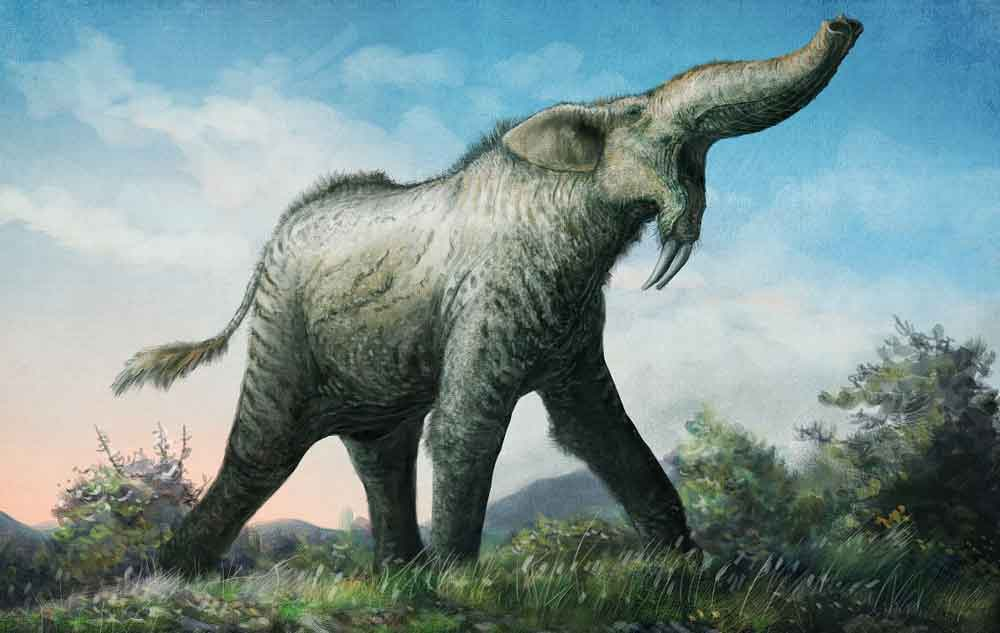 In many cases, the favoured, traditional look for a given prehistoric animal is not necessarily the one we might favour. Here's an example: Mark has argued that a new look for the proboscidean  Deinotherium  - shown here - should be considered. Image: (c) Mark Witton/  Witton (2018)  .
