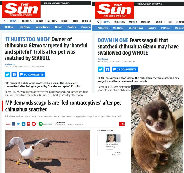 Alas, poor Gizmo. Screengrabs of headlines from some of the UK's most noble gutter rags.