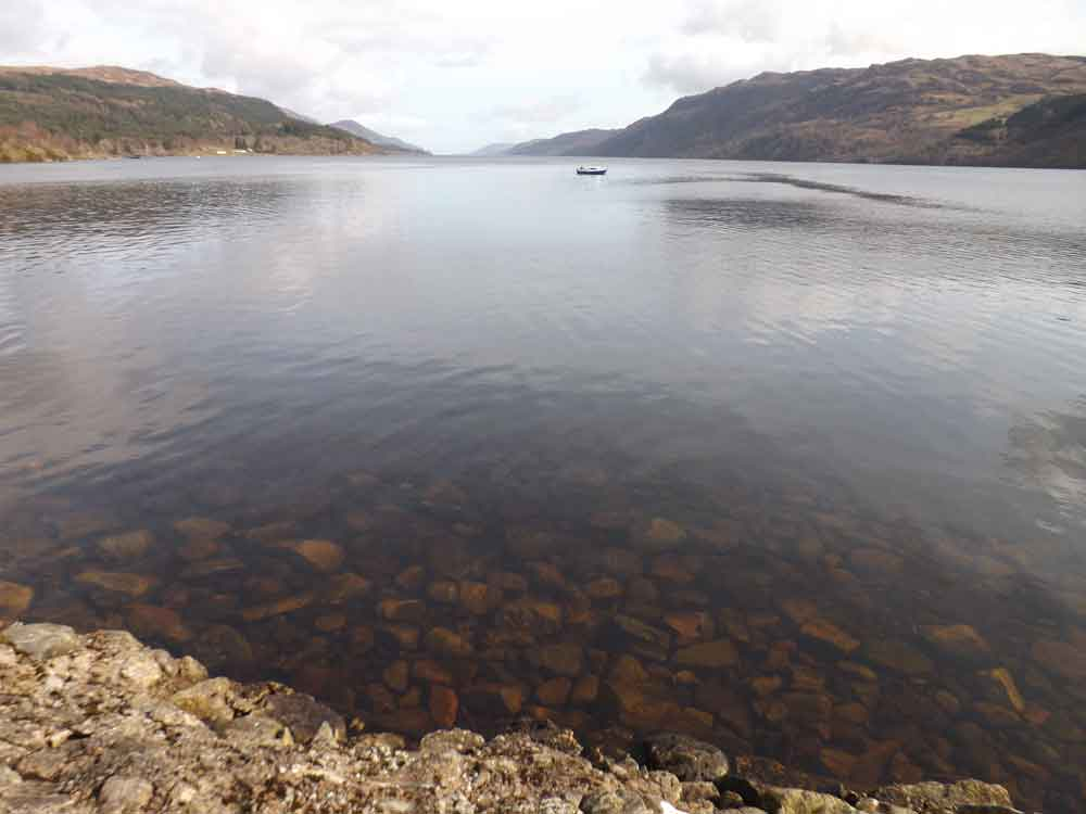 Loch Ness is often a beautiful and serene body of water, but I can't help feeling that it must seem remote and lonely at times of the year. This photo was taken in the Spring of 2016. Image: Darren Naish.
