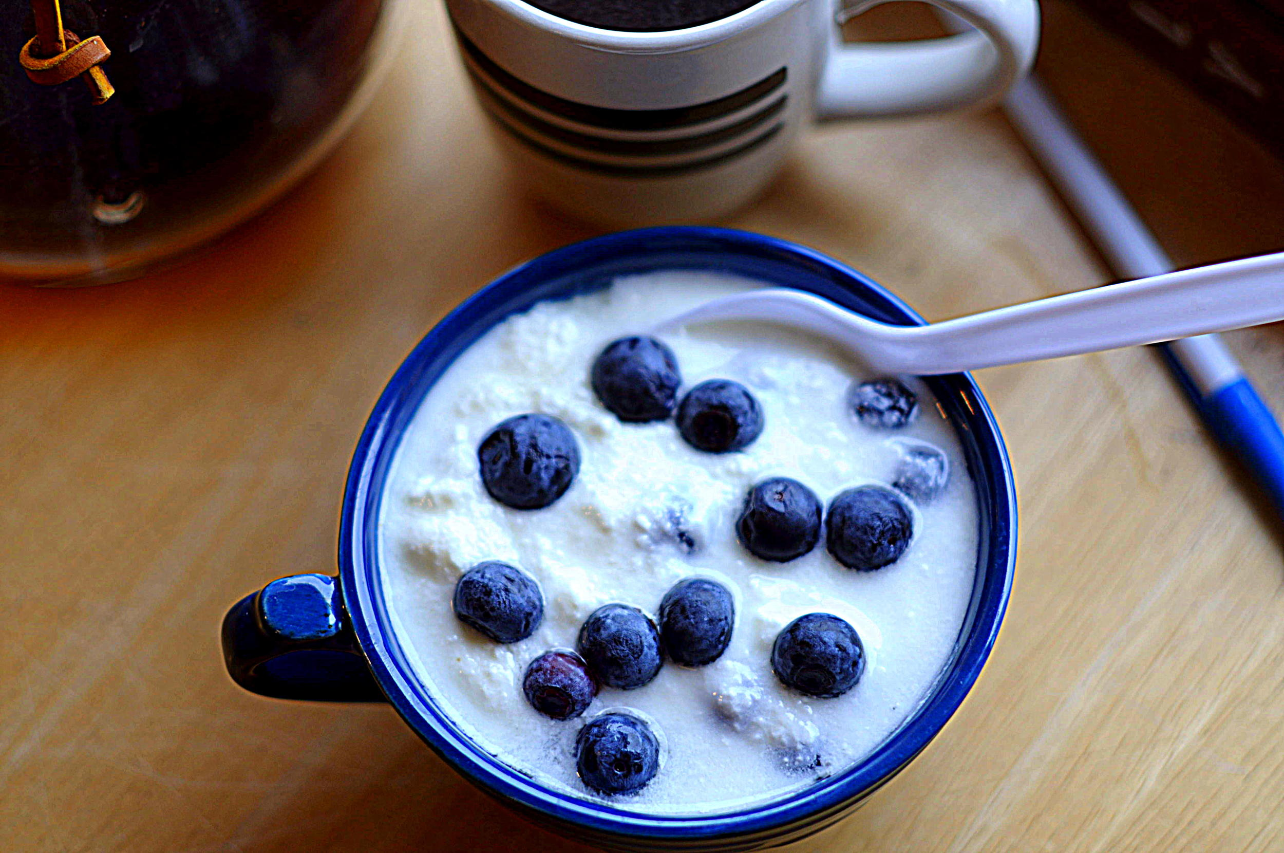 Home-made Yogurt & Blueberries