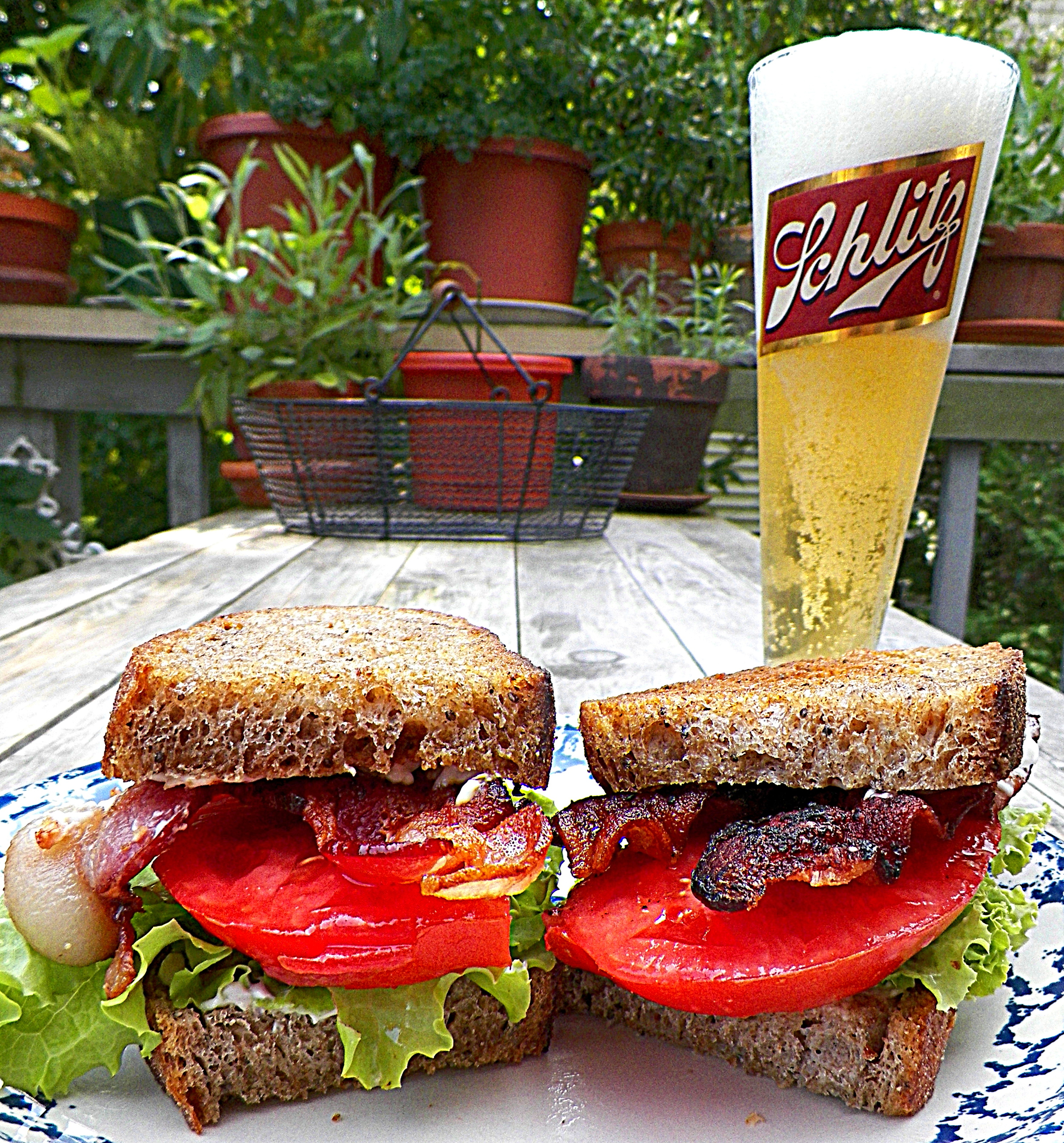 BLTs - everything grown, foraged, cured, baked at home (except for the beer!)