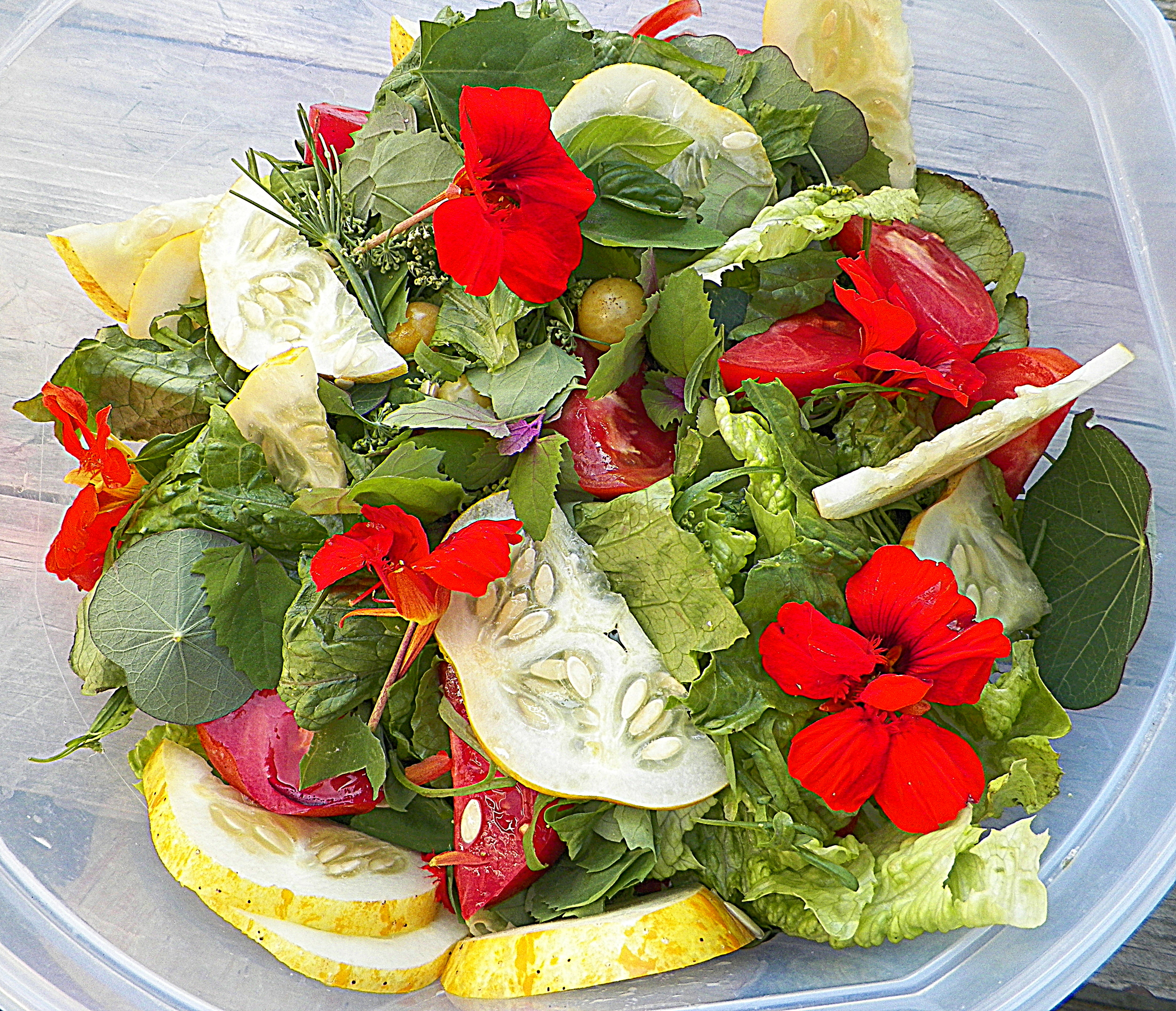 Salad w/ peppercress, fennel buds, lemon cukes, basil, nasturtiums, etc