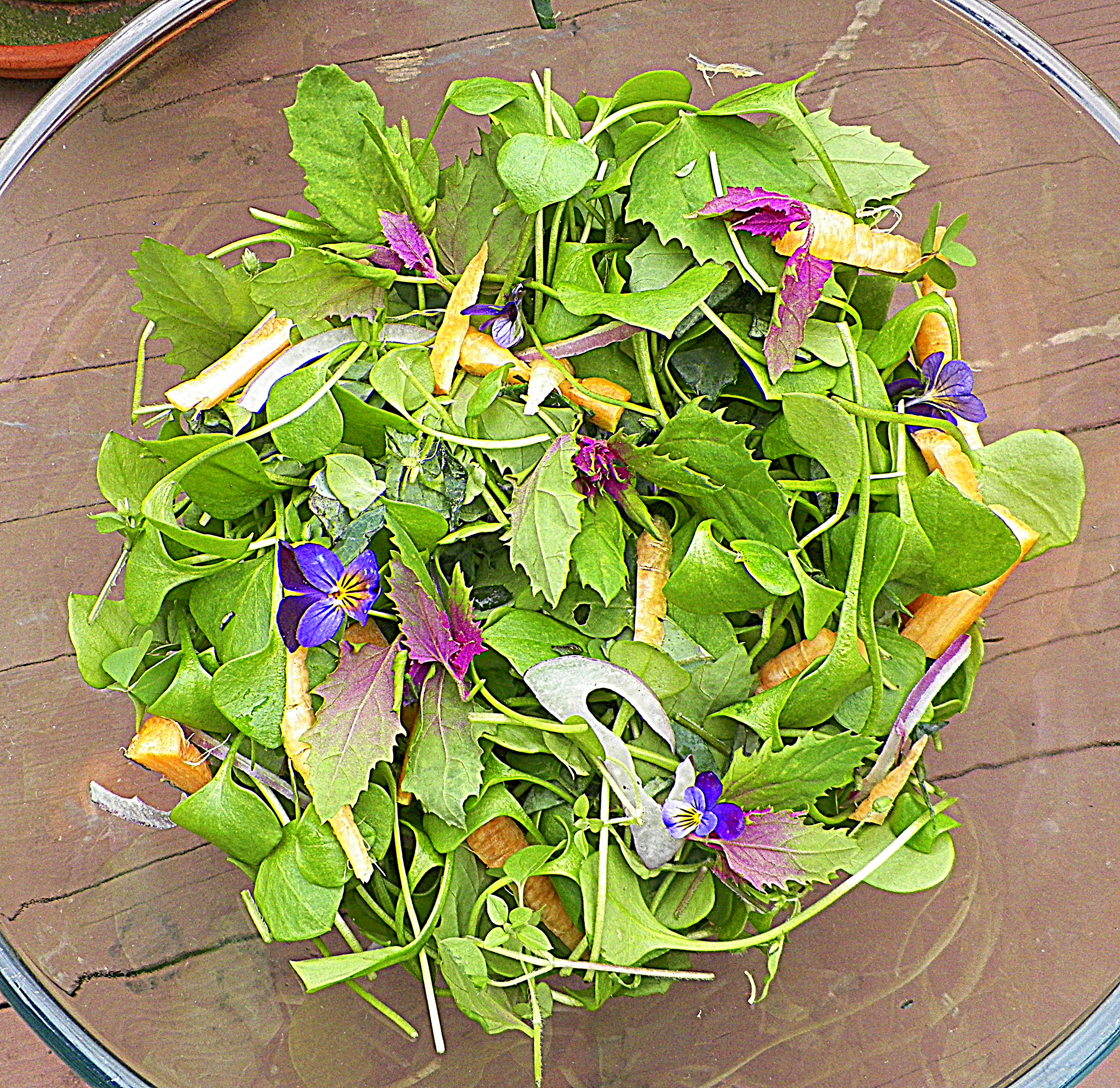 Season's last garden salad w/ miners lettuce, lambs quarters, wood sorrel, chickweed, fennel flower, onion, pansy, kale