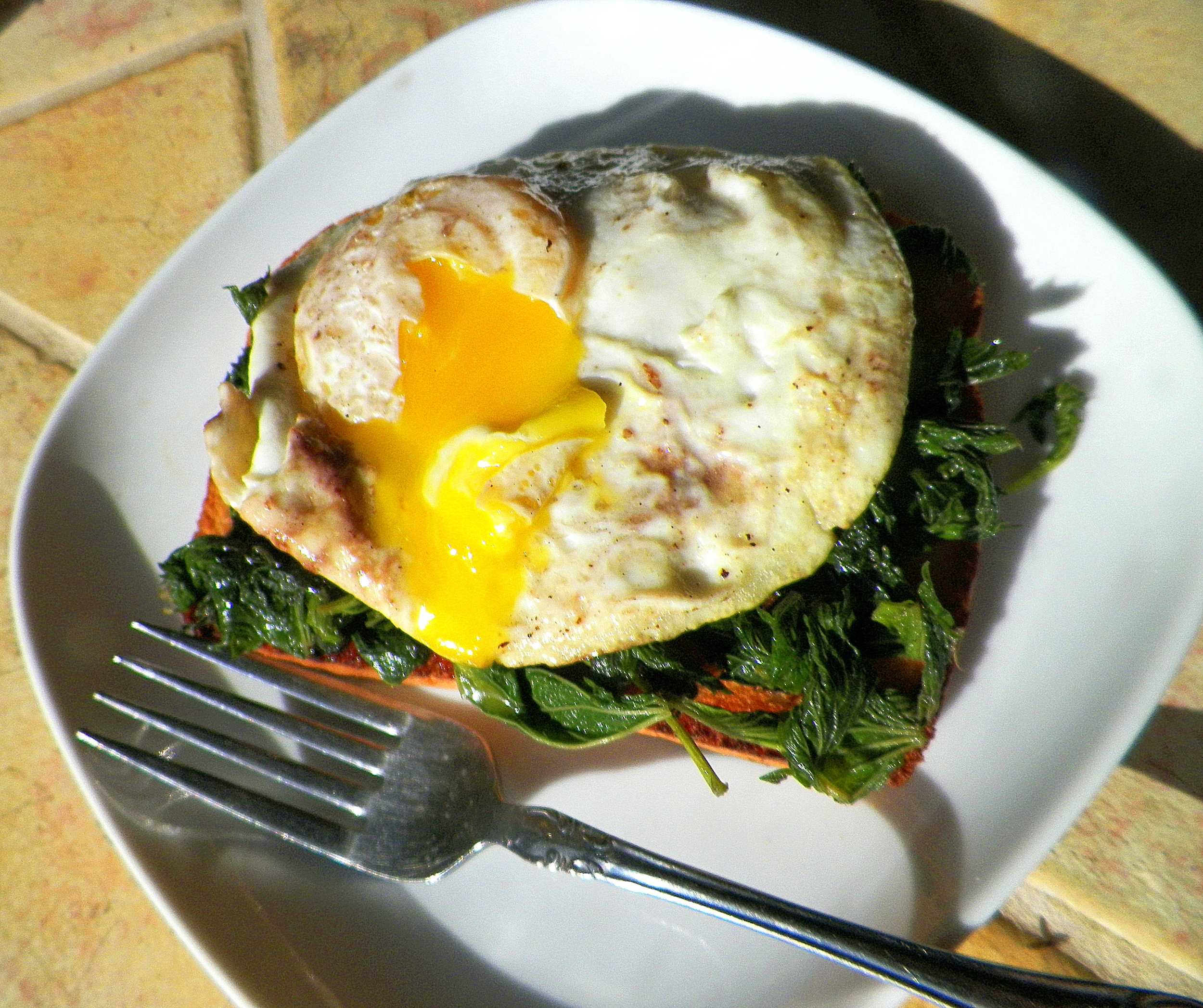 Simple breakfast: stinging nettles & egg on toast.