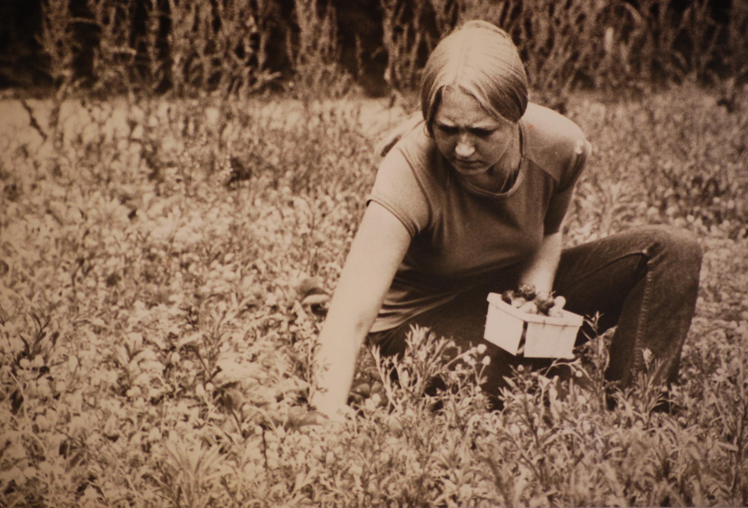 Claire Farming