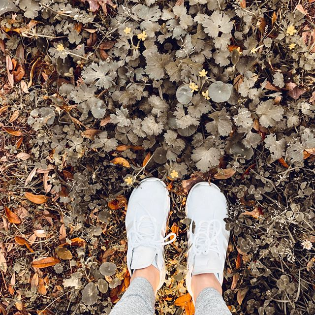 Happy Sunday friends! Got outside today to get some fresh air before the freeze comes through. ⠀⠀⠀⠀⠀⠀⠀⠀⠀ ⠀⠀⠀⠀⠀⠀⠀⠀⠀ Little did I know the rain would be coming down... It's fine we still got out just to drive.⠀⠀⠀⠀⠀⠀⠀⠀⠀ ⠀⠀⠀⠀⠀⠀⠀⠀⠀ We stay cooped up inside most of the week. Parker homeschools, I have 100 projects going all at once, Elliott is on a strict nap schedule and both girls will for the most part only eat food I cook. So we are home a lot. ⠀⠀⠀⠀⠀⠀⠀⠀⠀ ⠀⠀⠀⠀⠀⠀⠀⠀⠀ Needless to say we do get cabin fever when Friday rolls around. So that is why we get out on the weekend. That is why I have to get out on the weekends. ⠀⠀⠀⠀⠀⠀⠀⠀⠀ ⠀⠀⠀⠀⠀⠀⠀⠀⠀ Once flu season is gone we will explore more during the week but for now we will just get out and about on our weekends. ⠀⠀⠀⠀⠀⠀⠀⠀⠀ ⠀⠀⠀⠀⠀⠀⠀⠀⠀ What about you guys? Do you have cabin fever by the weeks end or are you one to not let anything stop you from getting out and about during the week? ⠀⠀⠀⠀⠀⠀⠀⠀⠀ .⠀⠀⠀⠀⠀⠀⠀⠀⠀ .⠀⠀⠀⠀⠀⠀⠀⠀⠀ .⠀⠀⠀⠀⠀⠀⠀⠀⠀ .⠀⠀⠀⠀⠀⠀⠀⠀⠀ .⠀⠀⠀⠀⠀⠀⠀⠀⠀ .⠀⠀⠀⠀⠀⠀⠀⠀⠀ .⠀⠀⠀⠀⠀⠀⠀⠀⠀ #sahmlife #sahmlifestyle #tryingtokeepittogether  #honestmotherhood #mom_hub #momlife #strongwilledchild ⠀⠀⠀⠀⠀⠀⠀⠀⠀ #louisianafamily #momhood #holisticlifestyle #holisticfamily #oldnavyleggings #thisseasonoflife #momoftwogirls #girlmom #girlmomlife #lifewithlittles #motheringthroughig #dailyparenting  #candidmotherhood #mommyblogger #mommyvlogger #familiesofinstagram #motherhoodunplugged #mymomthyme #momthymegirls #momhood #homeschoolmom #homeschoolfamily