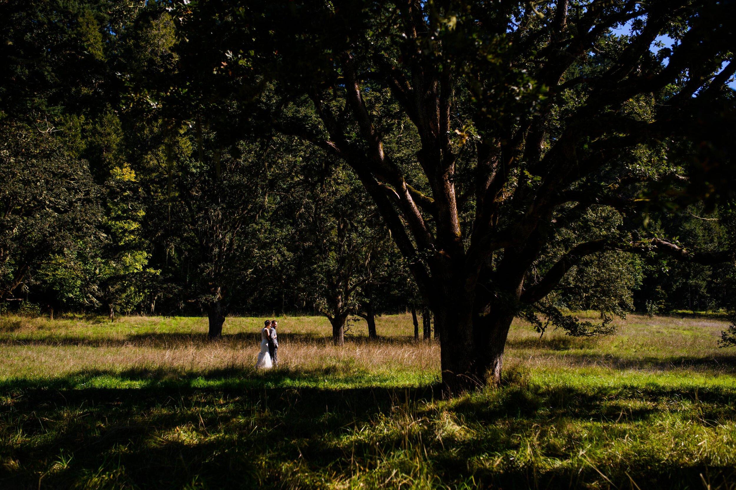 Mt. Pisgah Arboretum wedding photos 51.JPG