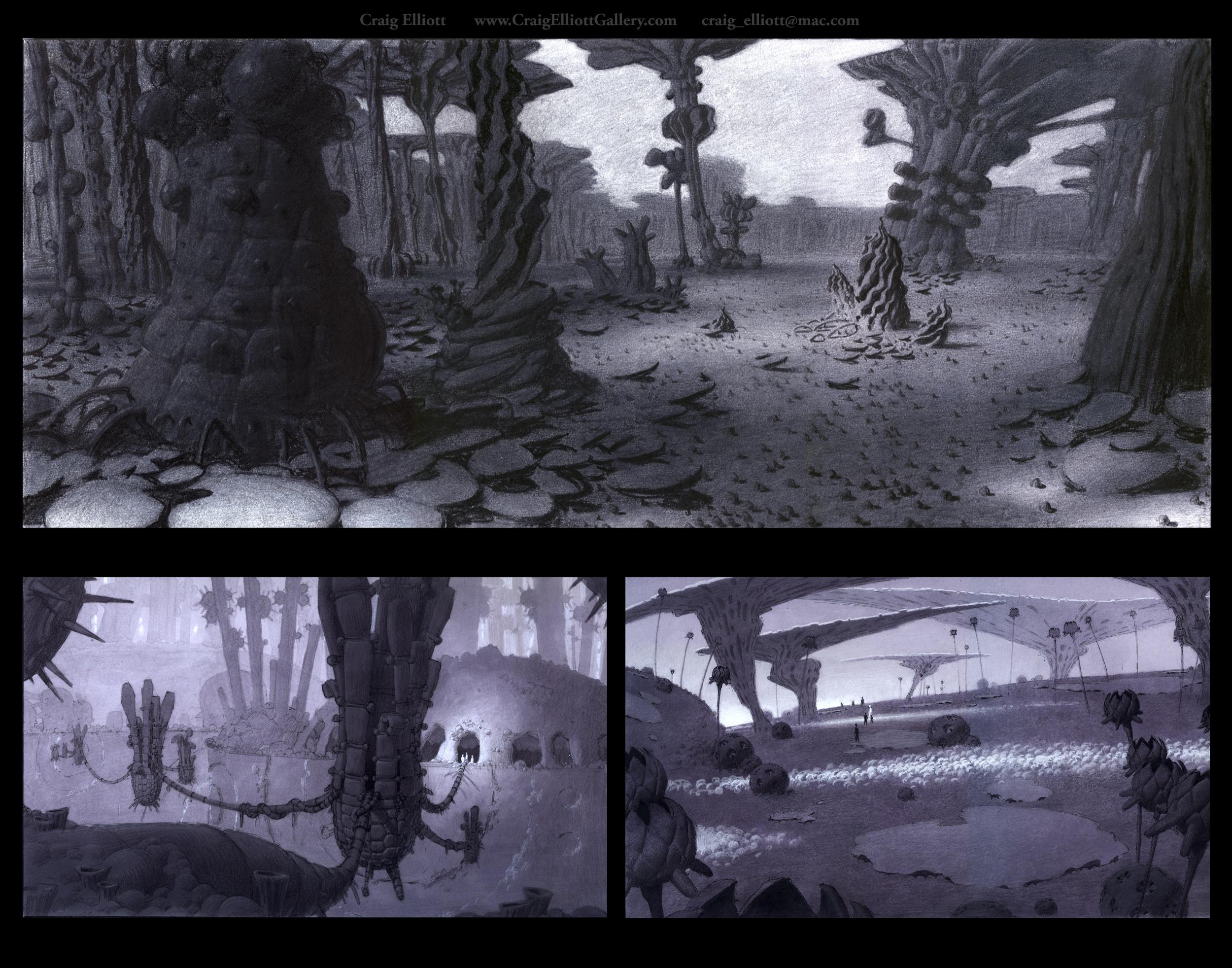 Environments-Nature_2.jpg