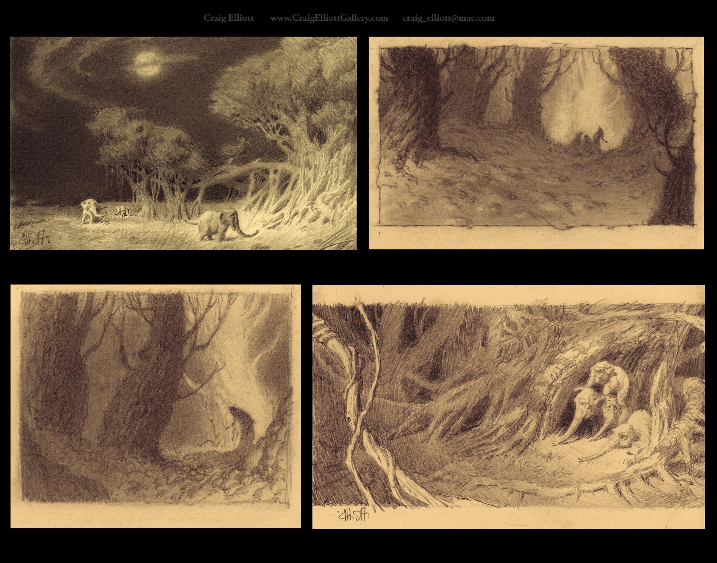 Environments-Nature_4.jpg