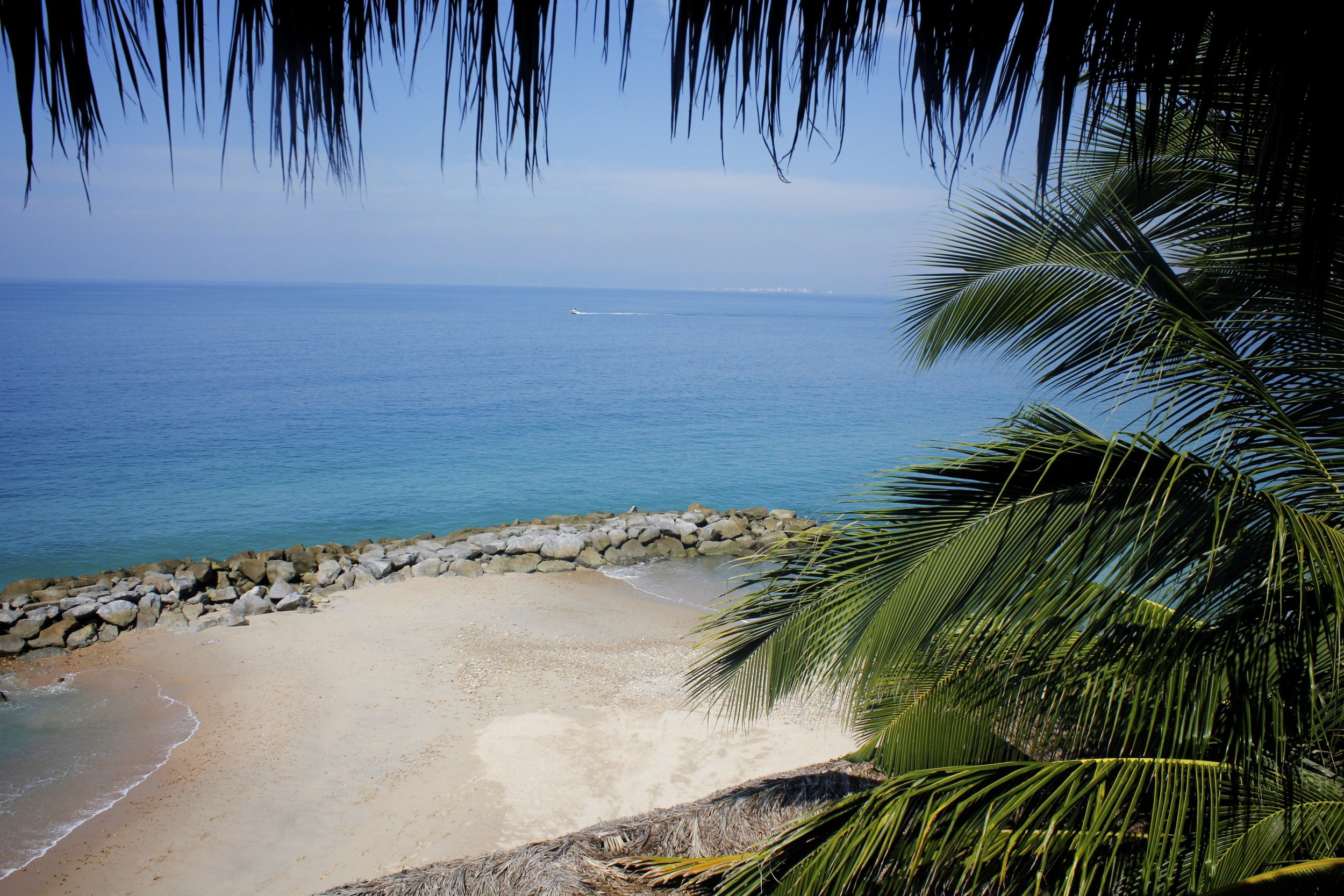 paradise found.