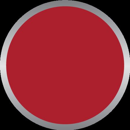 Dark Red PMS 1795C