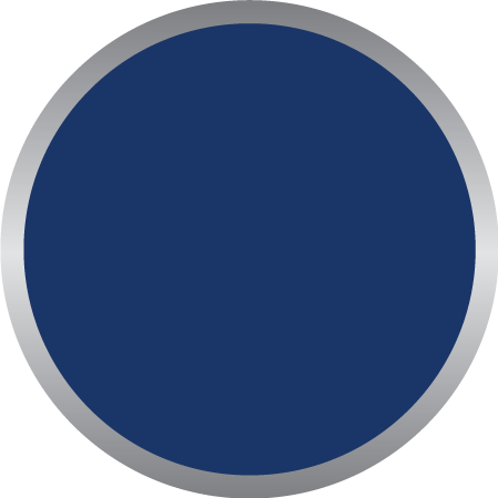 Dark Blue PMS 302C