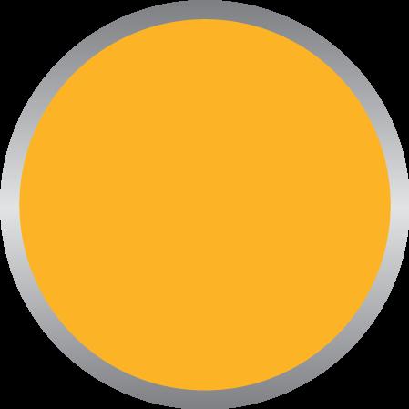 Warm Yellow PMS 135C