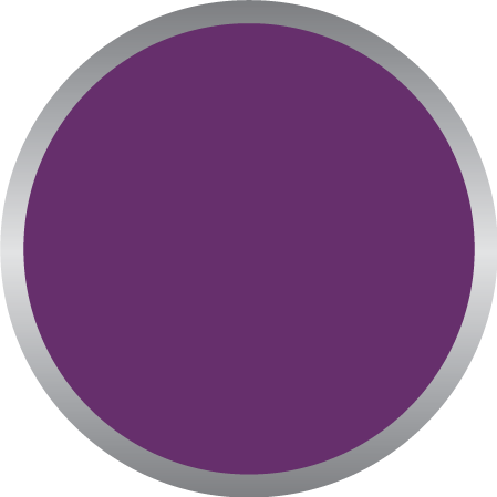 Purple PMS 259C