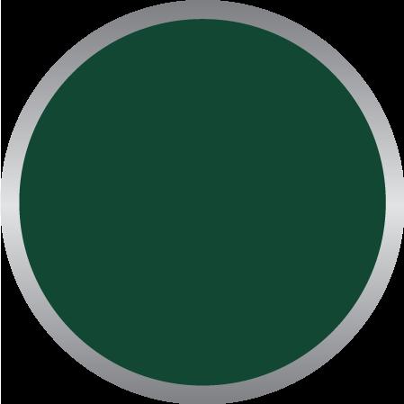 Dark Green PMS 349C