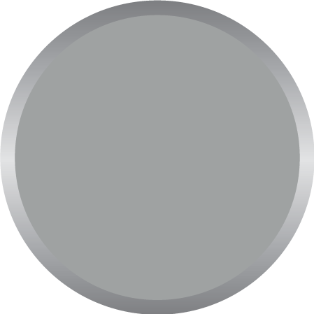 Light Grey PMS 7543C