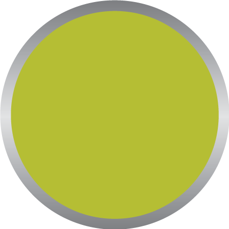 Acidic Green PMS 382C