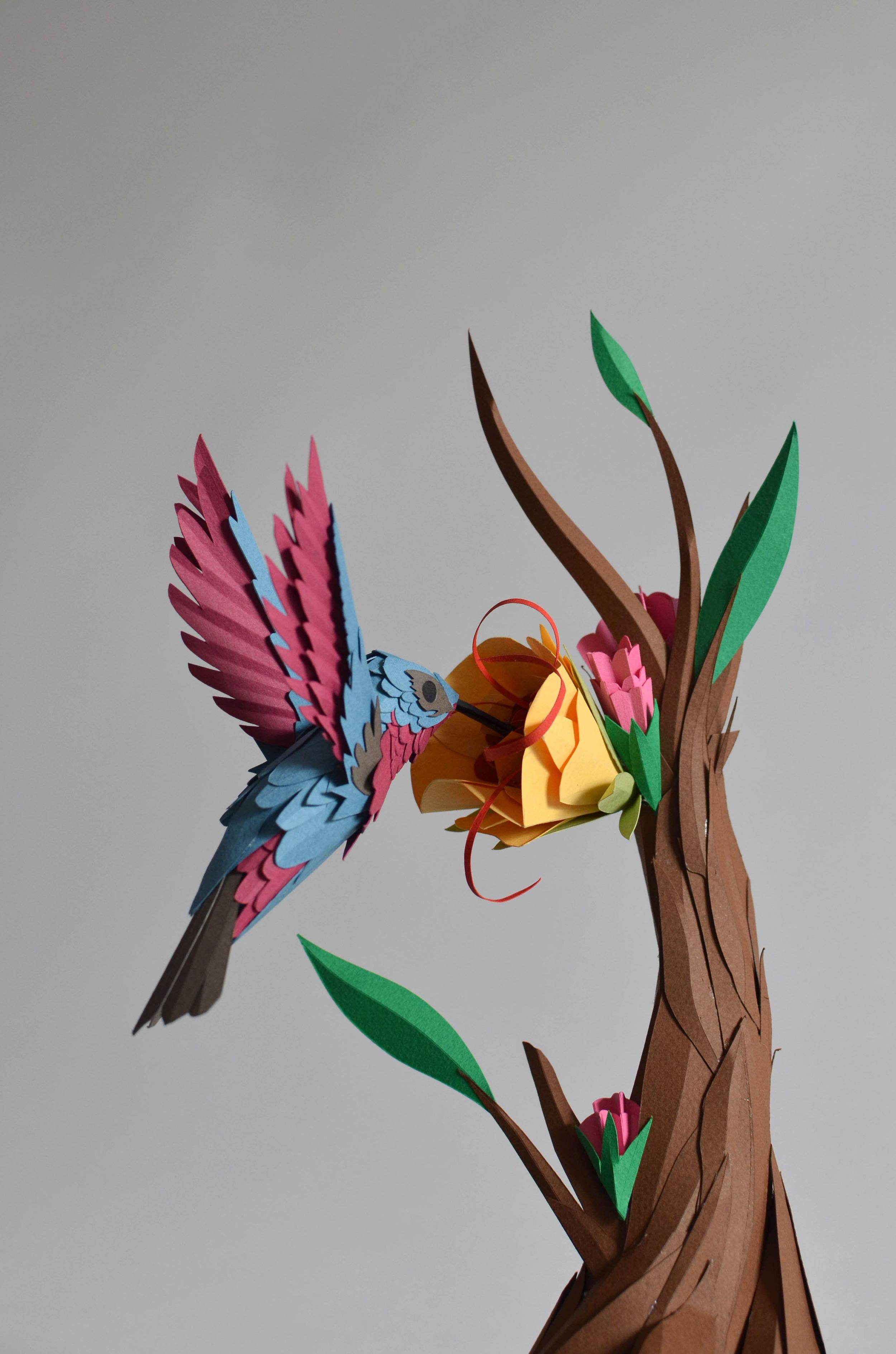 Hummingbird 1.jpg