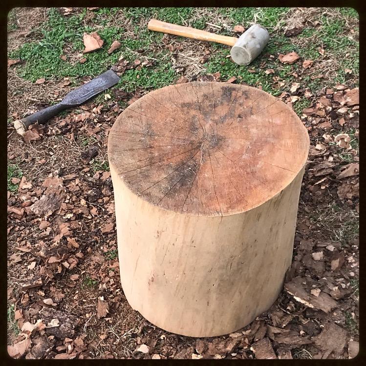 Stump - Copy.JPG