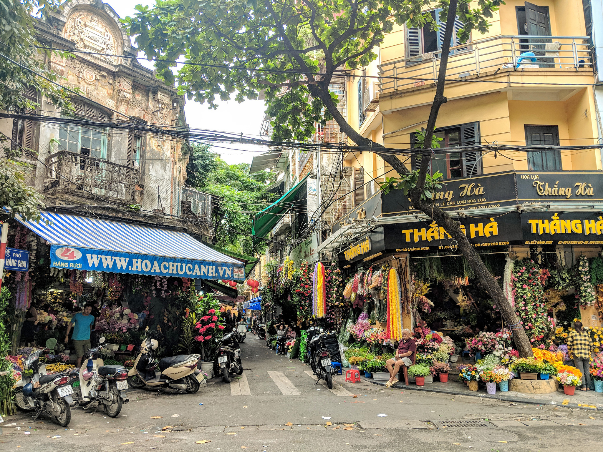 In the Old Quarter streets are organized by the products they sell- this one is covered in flower shops