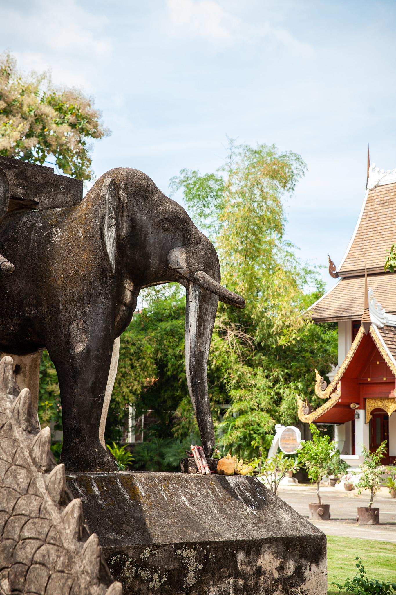 Detail of the elephants at Wat Chiang Man