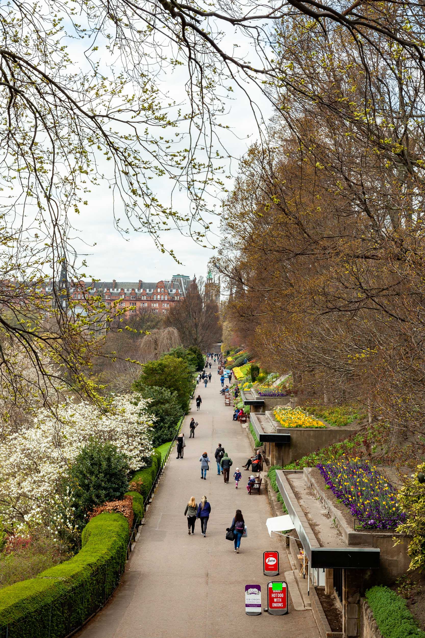 Spring has sprung in the Princes Street Gardens