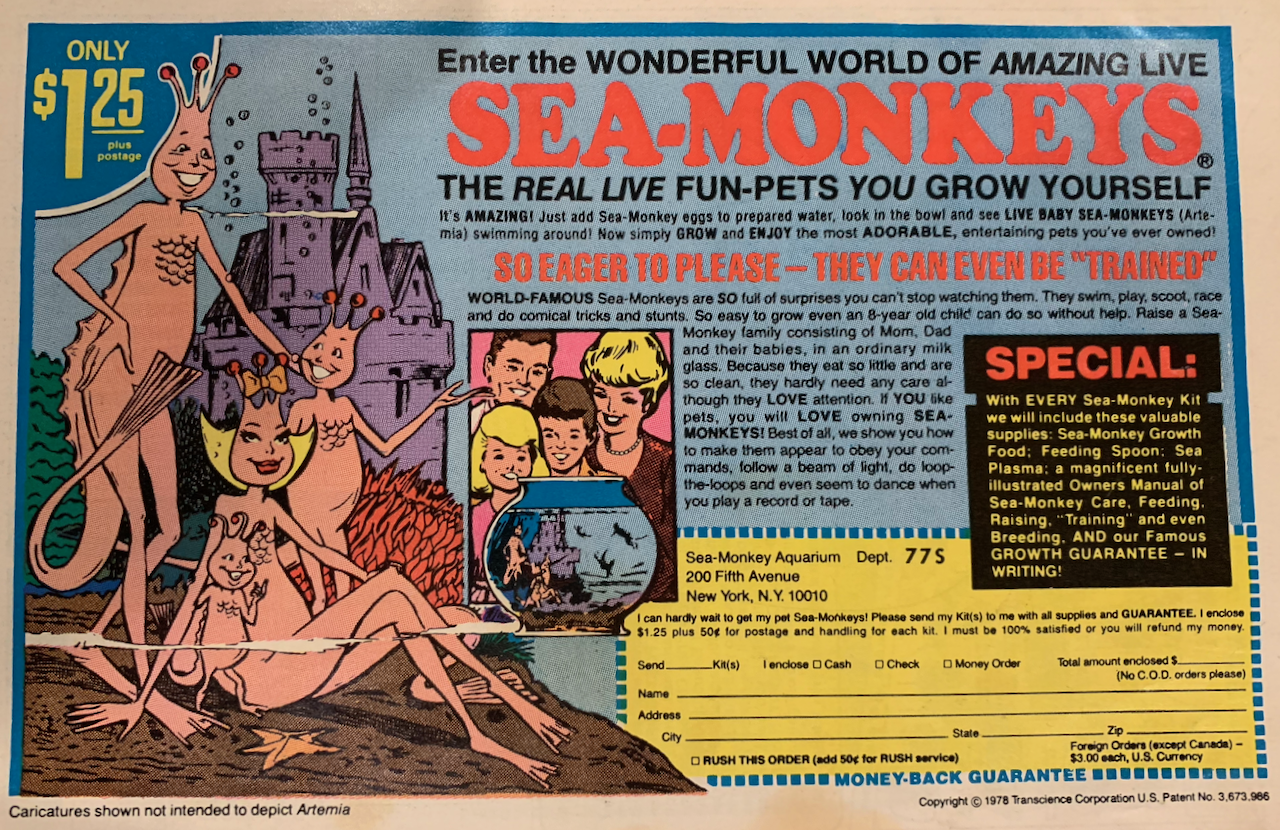 A full page ad in my 1970s era comic books