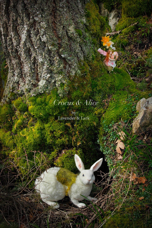 The Burrow by Lavender & Lark.jpg