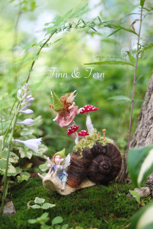 Finn & Fern.jpg