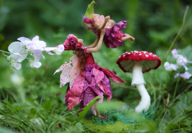Lila & Violet by Lavender & Lark