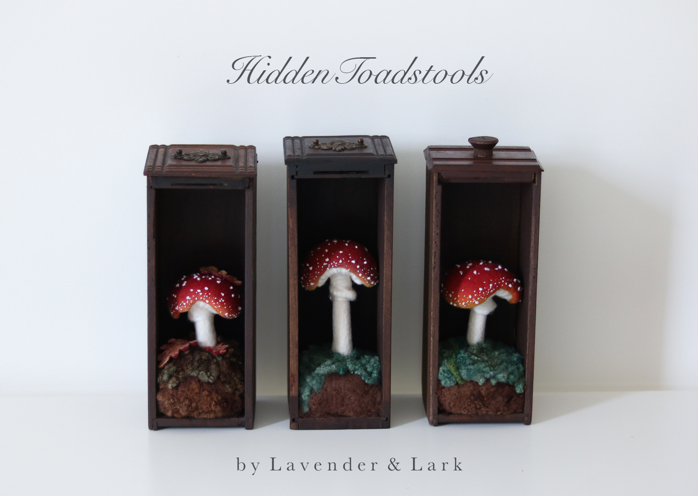 Hiding toadstools by Lavender & lark